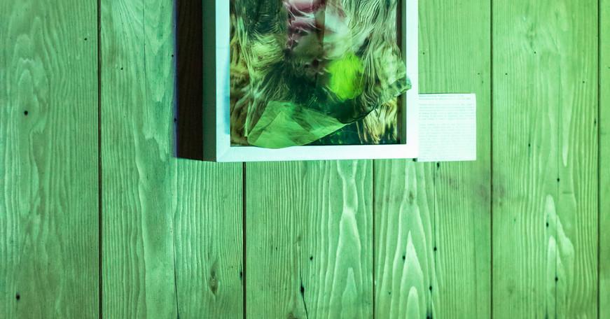 'Futuristic Woman' Jessica Goehring