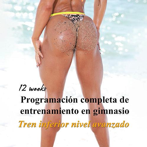 Tren inferior avanzado · Programación específica de entrenamiento en gimnasio