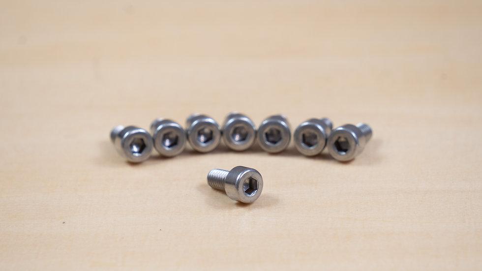 Stainless Steel Motor Screws (8)