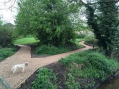 Croco Path.jpg