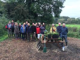 volunteers planting wildflower plugs in
