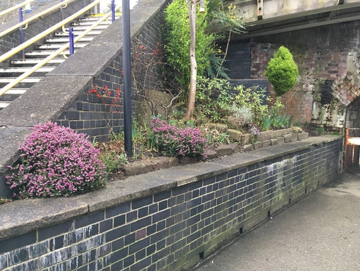 Station Gardens.jpg