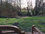 Lochmaben bench 4.jpg