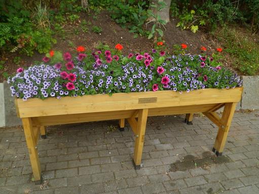 trough of flowers.JPG