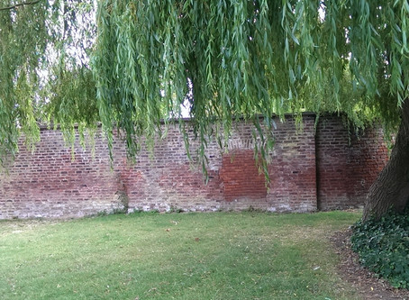 Middlewich's Heritage - Green spaces