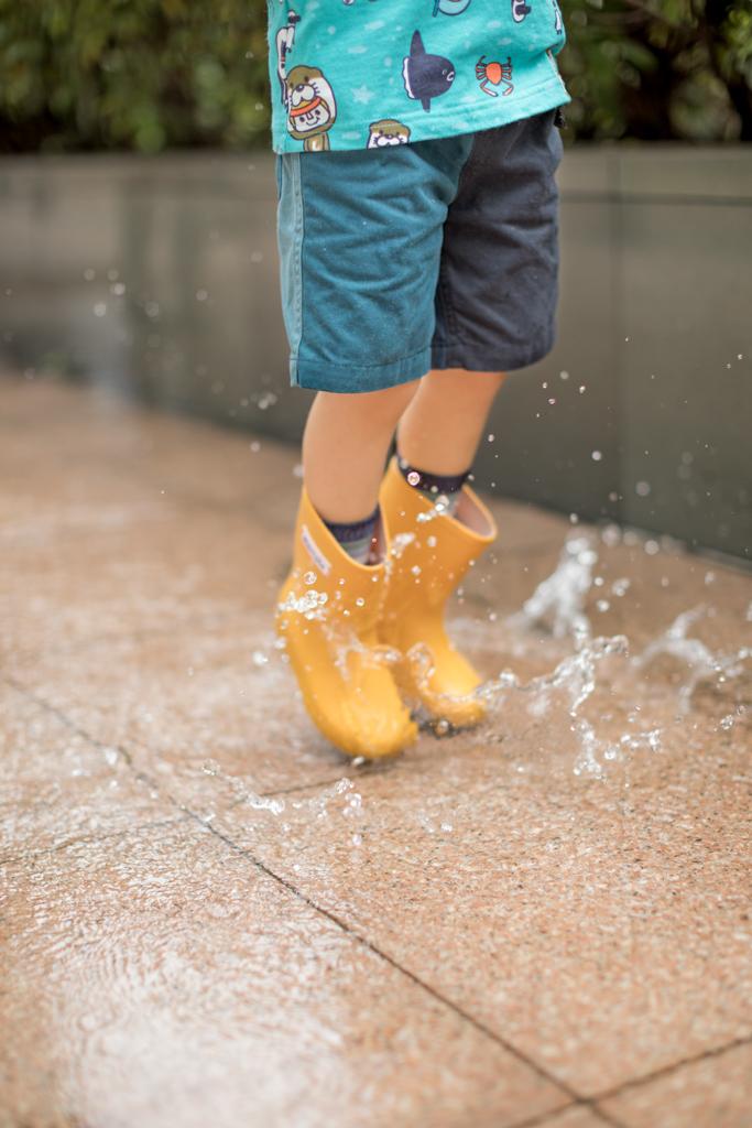 Judy | rain