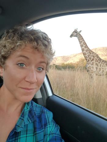 Botswana giraffe