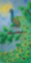 Paon1.jpg