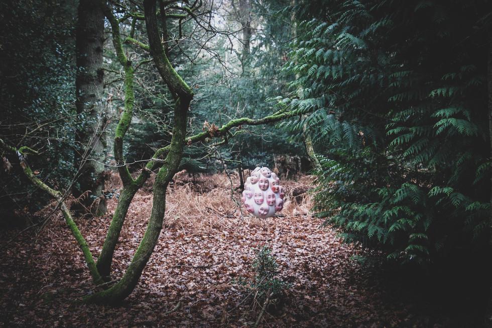 Forest Exhibition