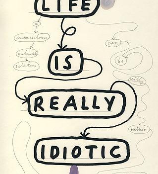 davis_paul_life_is_idiotic.jpg