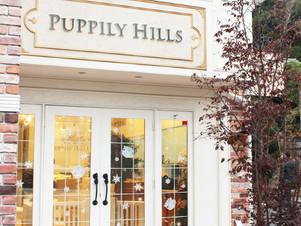 Puppily Hills 東京店