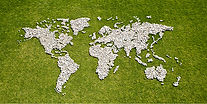 Map in Grass