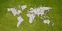 Mapa w trawie