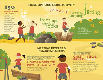 Green Schoolyards can increase physical activity