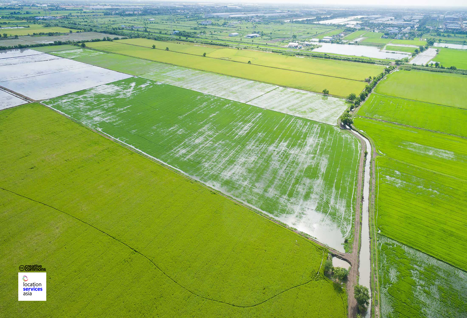 thai film locations farms fields q.jpg