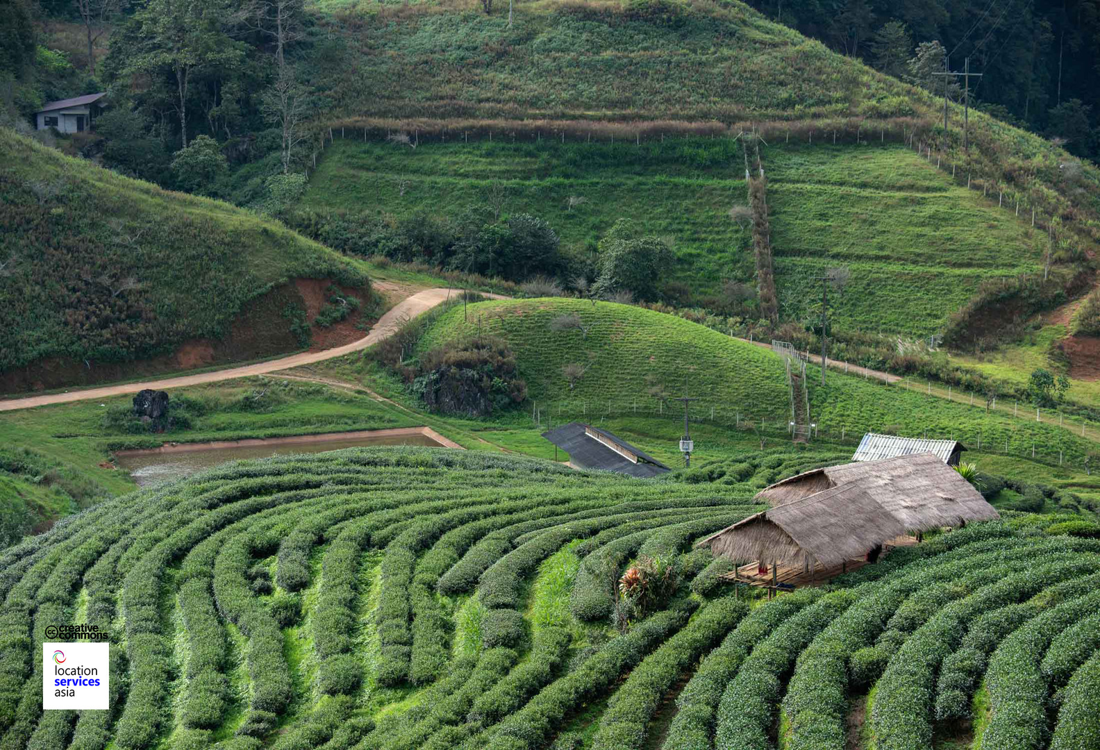 thai film locations farms fields k.jpg