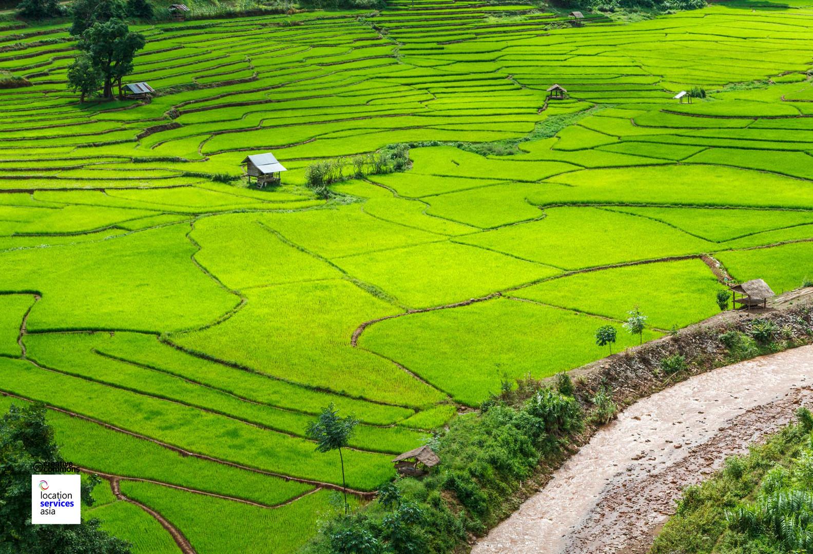thai film locations farms fields s.jpg