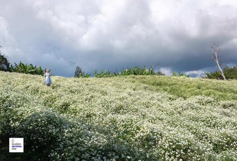 thai film locations farms fields e.jpg