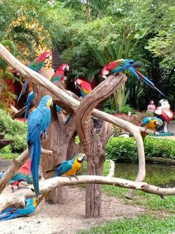 safari world_200906_69.jpg