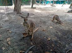 safari world_200906_32.jpg