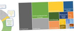 Budget Visualization.