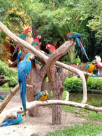 safari world_200906_68.jpg
