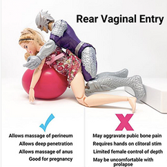 Sex Positions: Rear Vaginal Entry