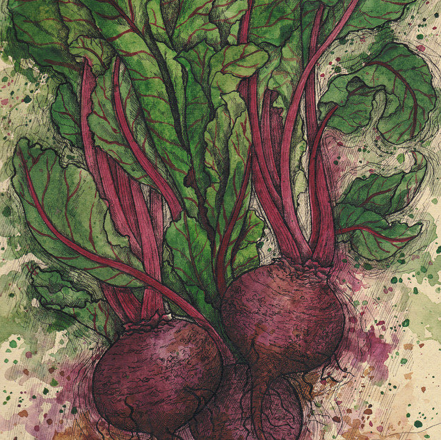 beetroot card1.jpg