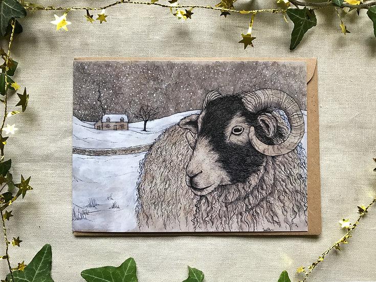 Winter Ewe Card
