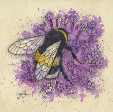 bumblebeeverbena.jpg