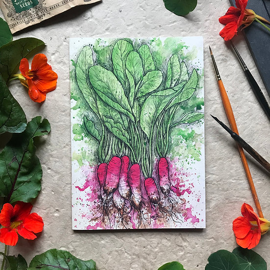 Radish Notebook