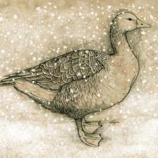 goose adjusted 10x14 snow.jpg