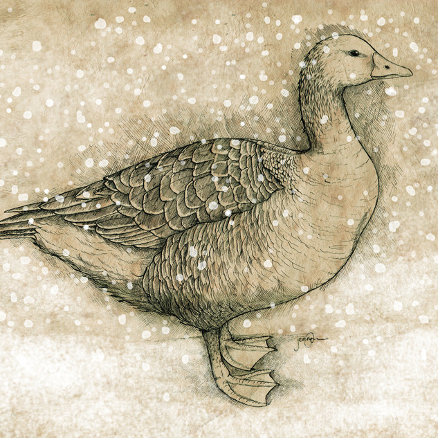 goose adjusted 10x14 snow.jpg
