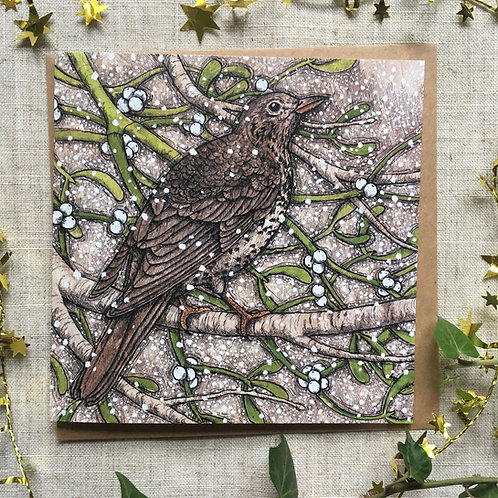 Mistle Thrush Card