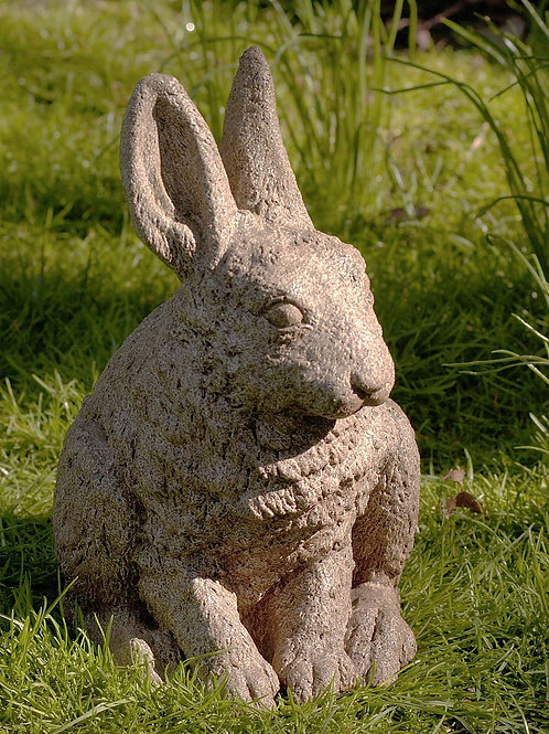 Hare Seated-ears up