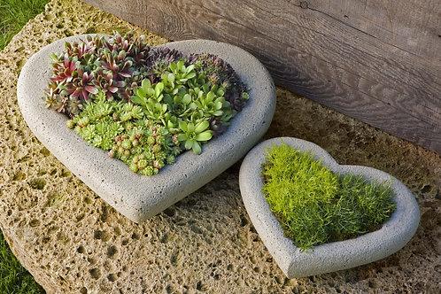 Heart Large Planter