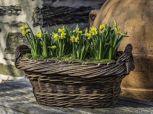 Olive Harvest Basket