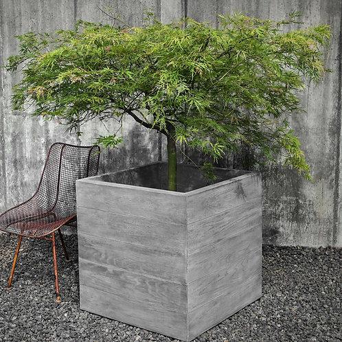 Chênes Brut Box Planter