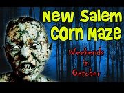 NEW SALEM CORN MAZE