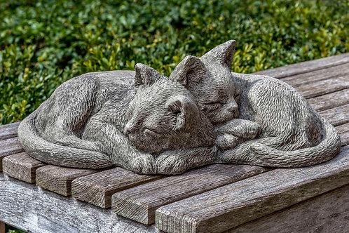 Nap Time Kittens