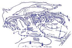 mount-mancelona-map
