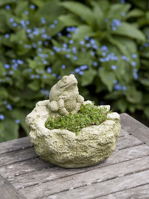 Mini Frog Planter