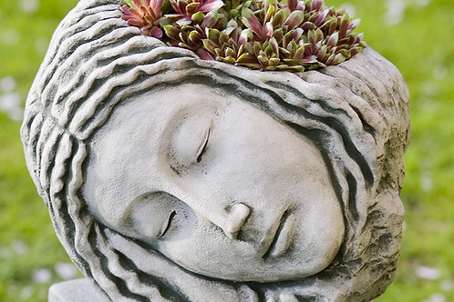 Sleeping Maiden Planter