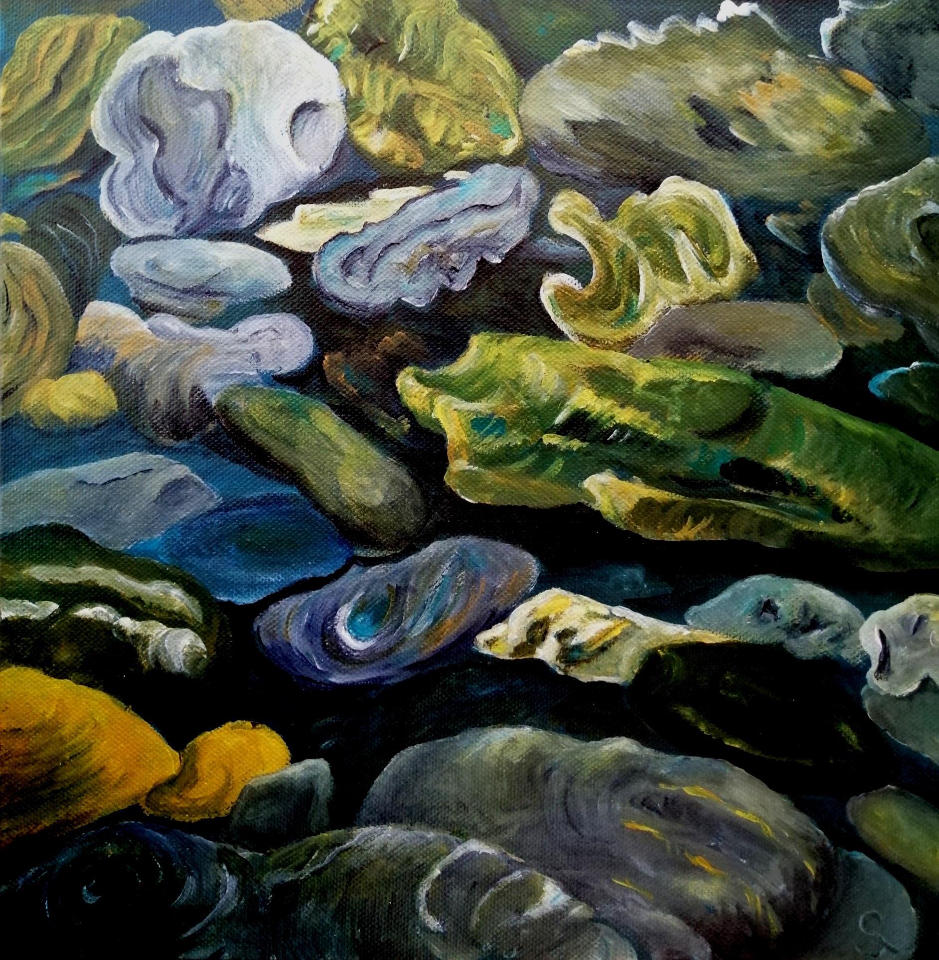 Steine am Haast River