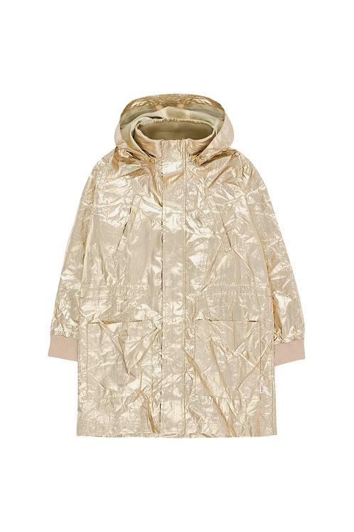 Gold Golden Jacket