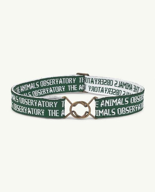 Green Lovebird Belt