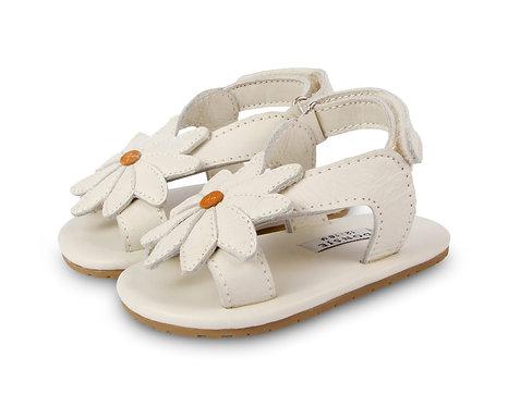 Tuti Daisy Baby Shoes