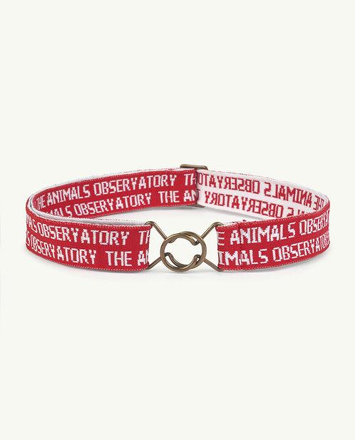 Red Lovebird Belt