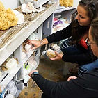 shopping-at-lemarche.jpg