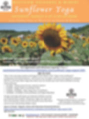 Yoga In The Sunflowers Westview Aug 15 2